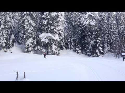 Ole Einar Bjørndalen v podání SDH Chářovice - Šumava 2013 a první sjezd