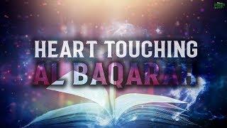 THE MOST HEART TOUCHING RECITATION OF SURAH BAQARAH