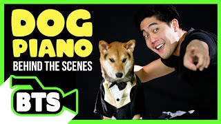 Filming with Marley and Roku! (BTS)