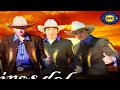 PEREGRINOS DEL AMOR de POR [video]