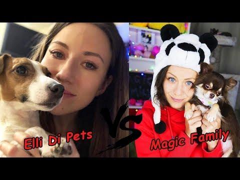 Кто лучше Elli Di Pets или Magic Family?
