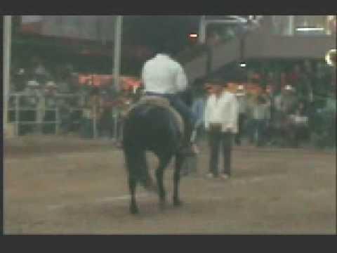 JAVIER LUKE BAILANDO CABALLO EN EXPOGAN 2008