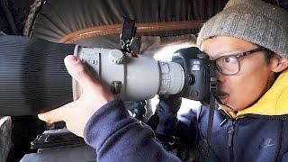 Canon 600mm f/4L II Hands-on + NAT GEO Wild!