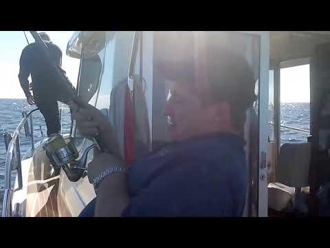 wyprawa na dorsza  marinero II wrzesień  2013