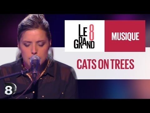 Cats On Trees - Love You Like A Love Song (live  Le Grand 8) video