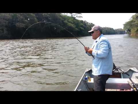 Pescaria Dourado 10 Kg Aquidauana - Ms