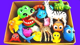 Learn Colors With Wild Animals and Zoo Animals | Colors For Kids