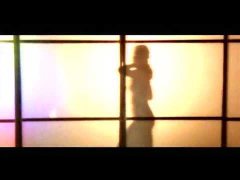 Armand van Helden - The Funk Phenomena (Official Video)