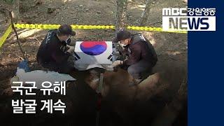 R)국군 유해 발굴 계속, 신원 확인 어려워-일데월투