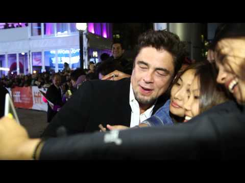 Escobar: Paradise Lost: Benicio Del Toro TIFF Movie Premiere Gala Arrival