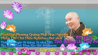 Kinh Đại Phương Quảng Phật Hoa Nghiêm, tập 0405