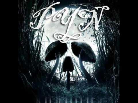 PYN - Lost Life (dubstep)