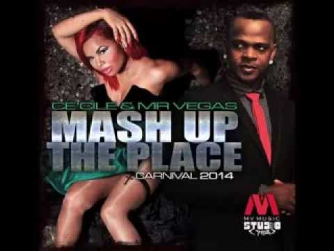 Cecile And Mr Vegas - Mash Up The Place (carnival 2014) video