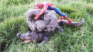Đồ chơi người nhện spiderman giải cứu cá sấu kẹt dưới tảng đá