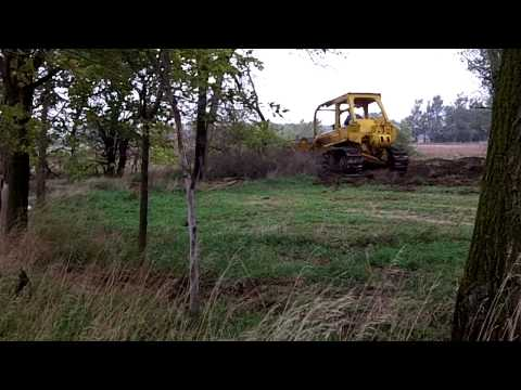 Dozer working to clear trees at Stroda Farms