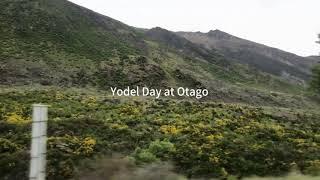 Yodel Day at Otago