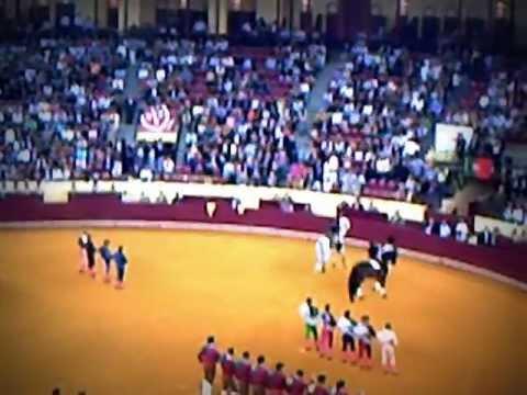 bull fighting boğa güreşi 1 atların dansı