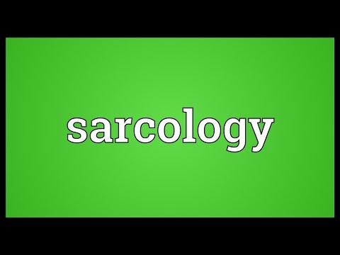 Header of sarcology