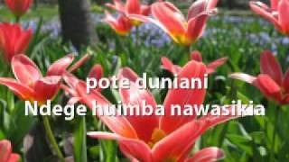 Bwana Mungu Nashangaa Kabisa (How Great Thou Art - Swahili)