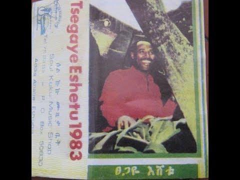 Tsegaye Eshetu - Enat Woder Yelat እናት ወደር የላት (Amharic)
