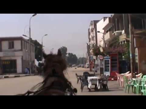 EGIPT -  EDFU maj 2013