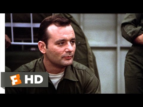 Chicks Dig Me - Stripes (4/8) Movie CLIP (1981) HD