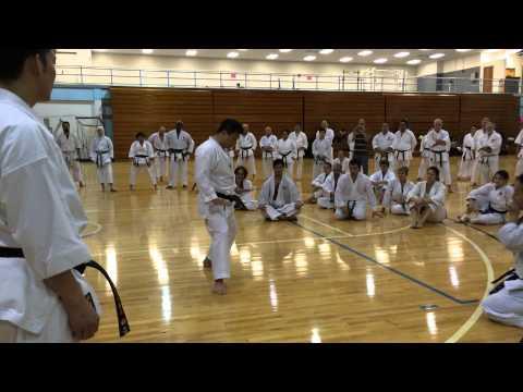Jka Taniyama Takuya Sensei - Zenkutsu Dachi To Kokutsu Dachi Transition video