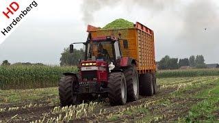 Case International 1455 XL + Case IH Puma 230 CVX | Harvesting mais | Nap | NL.