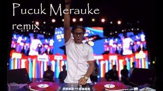 REMIX-Pucuk Merauke DJ puffy's COVER