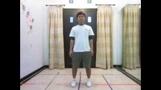 Watch Fumiya Fuji True Love video