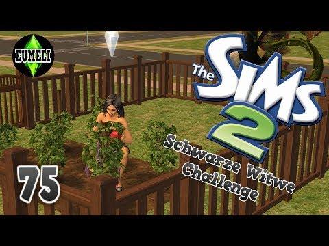 Garten pflegen und Gäste einladen - Part 75 | Die Sims 2 Schwarze Witwe Challenge (LP/HD)