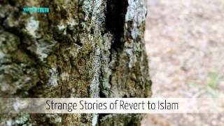 Strange Stories of Converts to Islam – Nouman Ali Khan