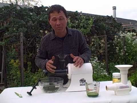Juice Wheat Grass & Leaf Vegetables with the Champion Juicer Greens Attachment