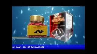 Hải Cẩu Hoàn - Extra Gold Super Seal - Bổ Thận
