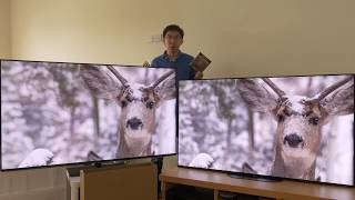 Panasonic GZ950 vs Sony AG9 (A9G) OLED TV Comparison