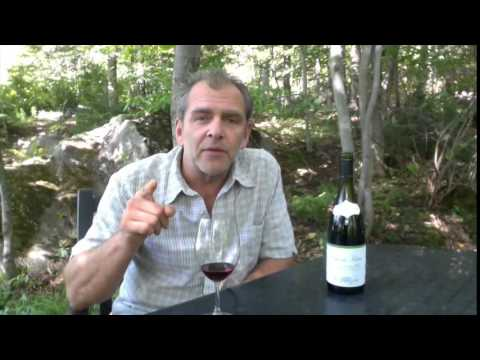 Why choose organic wines