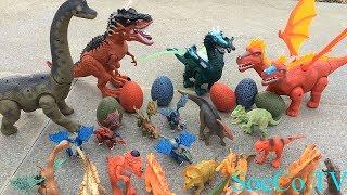 Bộ Sưu Tập Đồ Chơi Khủng Long - Dinosaur Collection - Đồ Chơi Mới Nhất Dành Cho Trẻ Em 2019