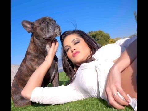 Top Bollywood actress and actor with pets