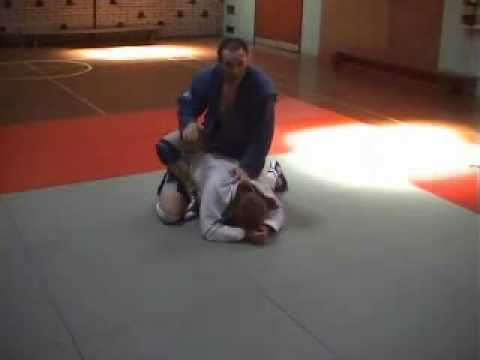 Sambo Techniques - Attacking the Turtle Image 1