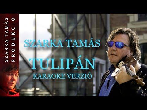 Szarka Tamás - Tulipán - karaoke verzió
