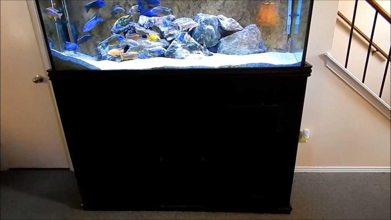 Diy King Aquarium Stand 120