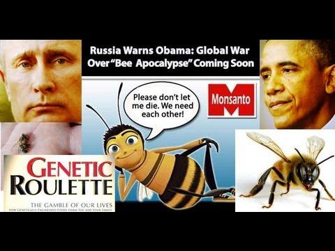 """BEE Apocalypse"" Russia Warns Obama of War!!!"