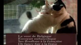 Watch Alain Souchon Le Baiser video