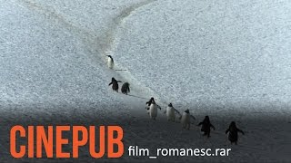 Exploratorul | The Explorer | Documentary Film [ENG.SUB] | CINEPUB
