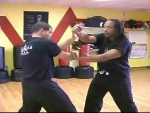 Advanced Jeet Kune Do Martial Arts : Combination Trap Technique in Jeet Kune Do Martial Arts Image 1