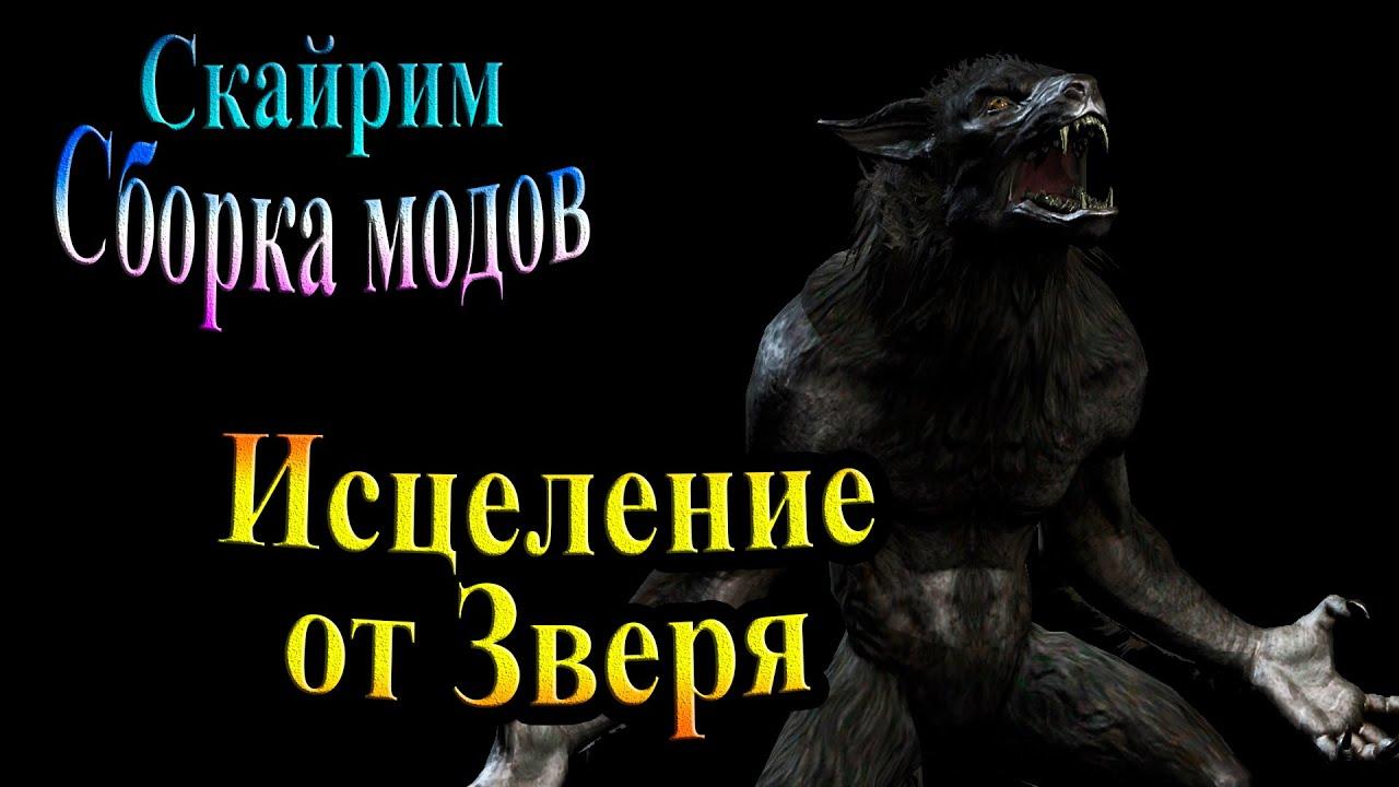 сайт сборки от зверя