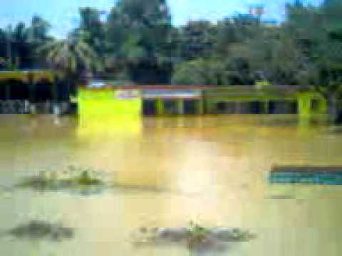 COMPLETE DEVASTATION IN ODISHA BY FLOOD