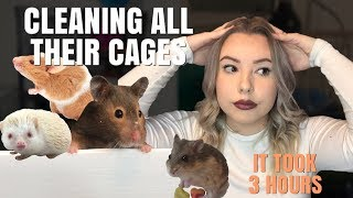 CLEANING ALL MY SMALL ANIMAL CAGES!
