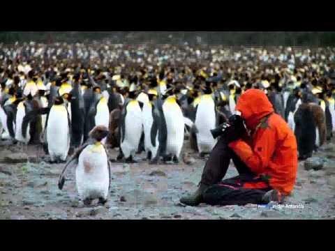 Expedition Antarktis