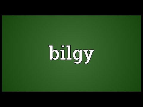 Header of bilgy